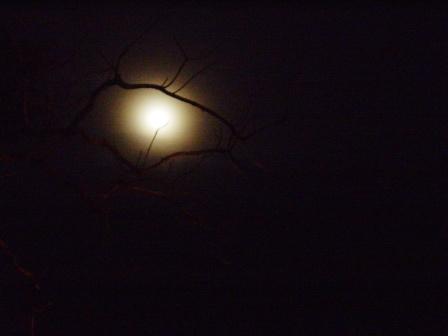 Kigali Moon Light