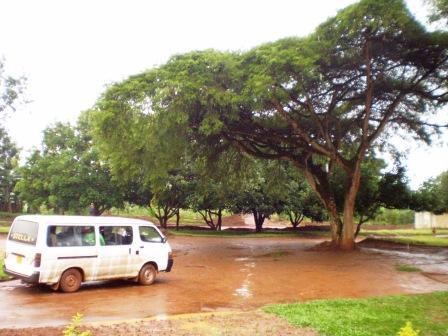Rainy day at Zaza