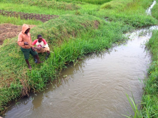Village boys fishing in the rice ditch - with nothing but stick and string (and skills!)